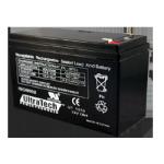 Batterie pour système d'alarme 12v 7ah